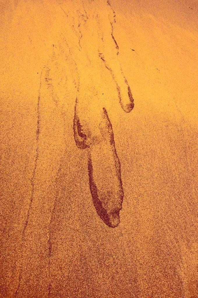 Digitale-Malerei-48-von-61DBK542013Andreas-Michael-Gast-DBK42013Andreas-Michael-Gast.JPG